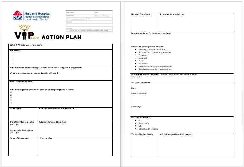 VIP Progam action plan template