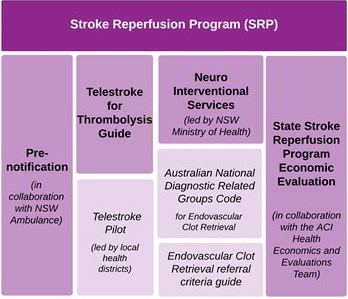 Stroke Reperfusion Program & Projects