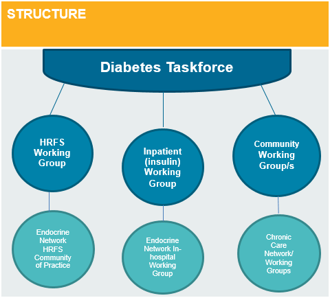 Structure of the Diabetes Taskforce: Three streams sit under the taskforce.  1. High Risk Foot Service Working Group and Endocrine Network High Risk Foot Service Community of Practice. 2. Inpatient (insulin) Working Group and Endocrine Network In-hospital Working Group. 3. Community Working Group/s and Chronic Care Network/ Working Groups