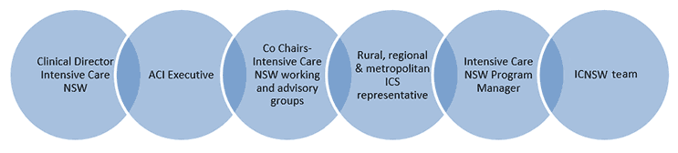 The Intensive Care NSW Executive Committee structure