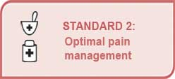 Standard 2 - Optimal pain management