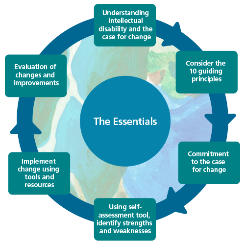 Diagram depicting 6 steps of 'The Essentials' process