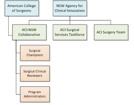 National Surgical Quality Improvement Program Governance Structure